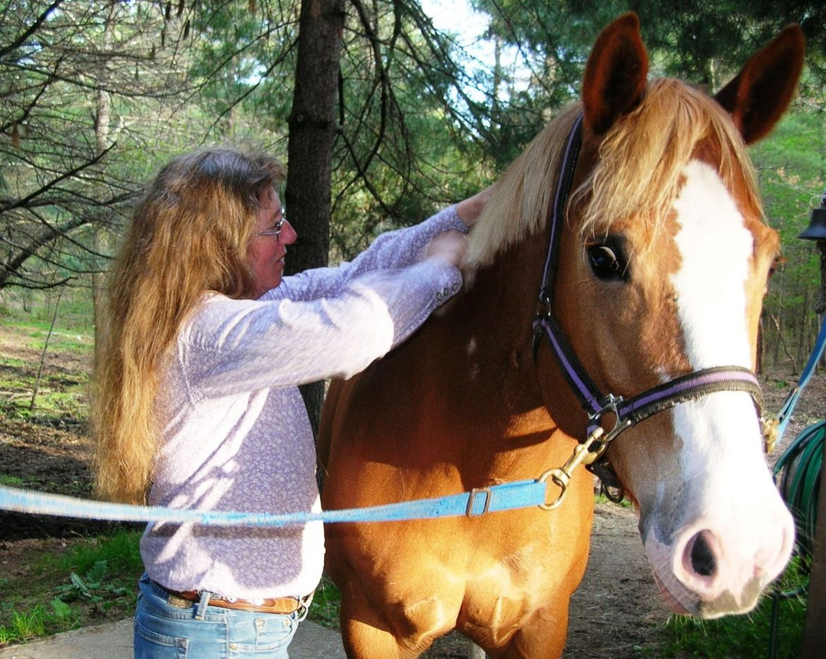 Lisa King: A life devoted to horses
