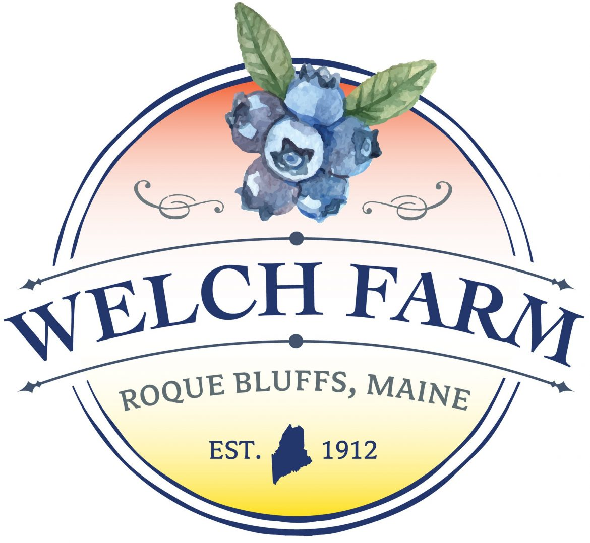 The Blueberries of Welch Farm in Roque Bluffs